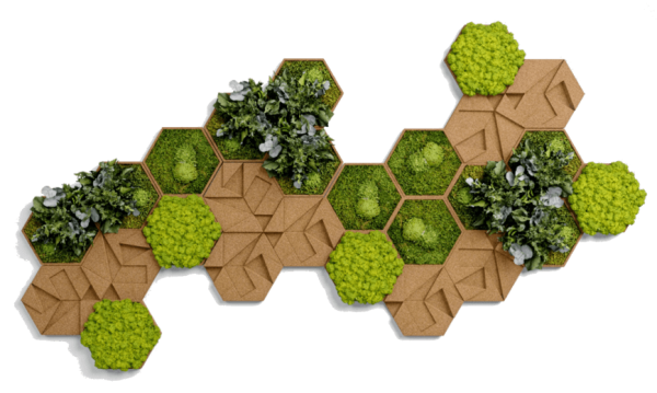 kork hexagon set frontal