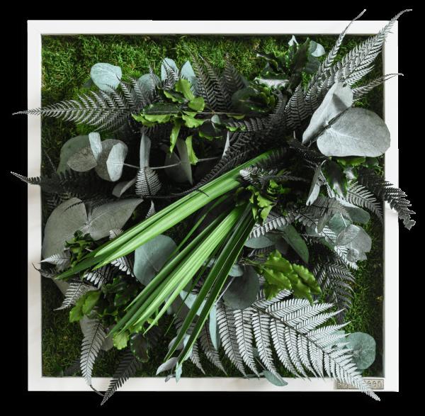 Pflanzenbild im Dschungeldesign 35x35cm Vollholz (weiß)
