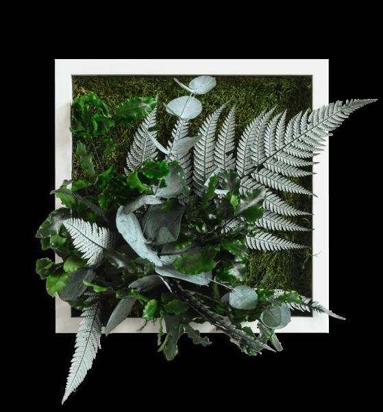 Pflanzenbild im Dschungeldesign 22x22cm Vollholz (weiß)