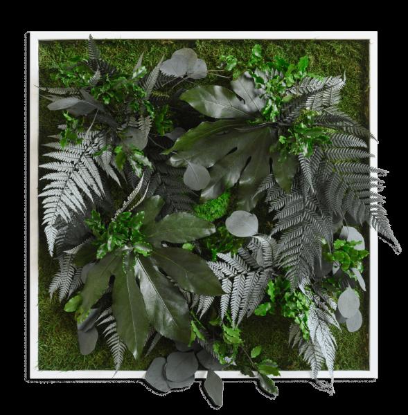 Pflanzenbild im Dschungeldesign 55x55cm Vollholz (weiß)