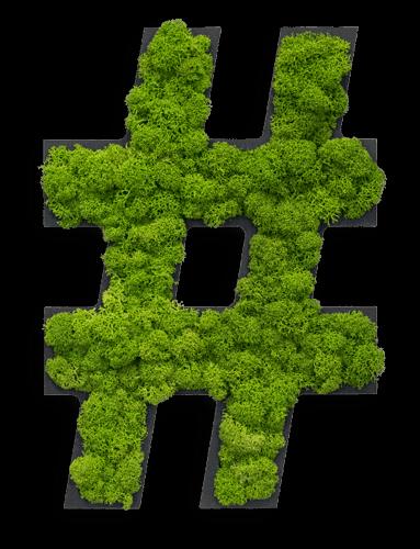 """Piktogramm: Sonderzeichen """"hashtag"""" Islandmoos"""