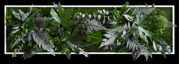 Pflanzenbild im Dschungeldesign 140x40