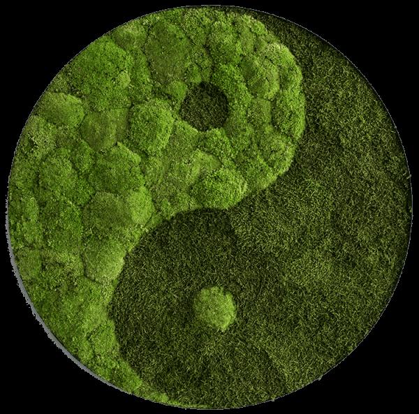 Wald- und Kugelmoosbild Yin und Yang